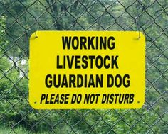 African Livestock Guardians